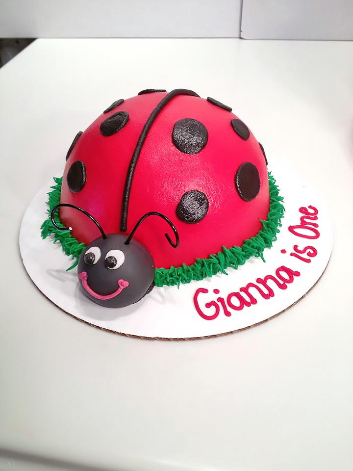 Magnificent Ladybug Birthday Cakes Hands On Design Cakes Personalised Birthday Cards Sponlily Jamesorg