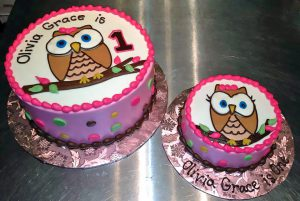 Owl Cake with Smash Cake