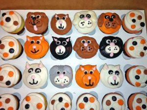cupcakes-dog-1244