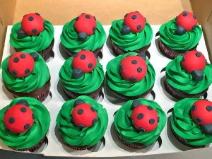 cupcakes-lady-bug-427